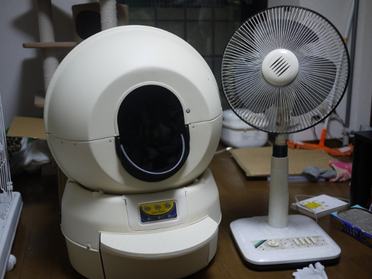 P1170246.JPG